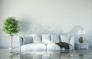 Flood, Fire and flood restoration