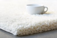 Read Our Top Tips on Why Your Carpets Need to Be Cleaned ...