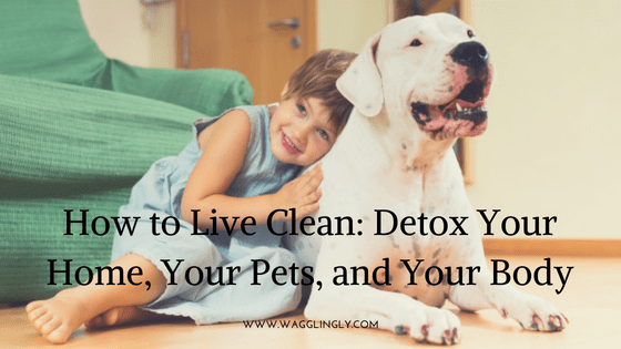 How to Live Clean: Detox Your Home, Your Pets and Your Body