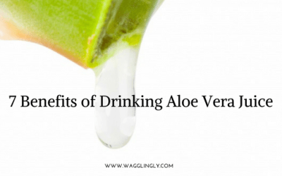 7 Benefits of Drinking Aloe Vera Juice
