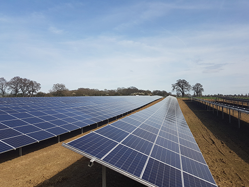 Clean Solar Solutions Clinch Greencells Solar Farm Ground Maintenance Contract