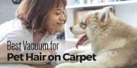 Best Vacuum for Pet Hair on Carpet 2017 - CleanSuggest