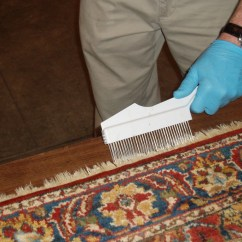 Denver Sofa Cleaning Theater Seating Carpet The Clean Team