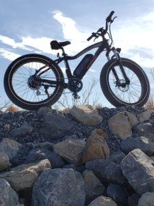 2019 Rad Rover electric bike