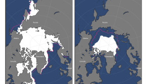 Arctic sea ice NOAA