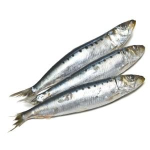 sardines_whole