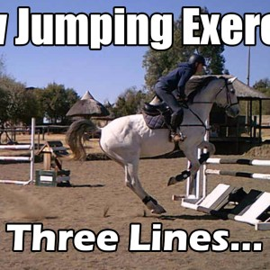 Show jumping training