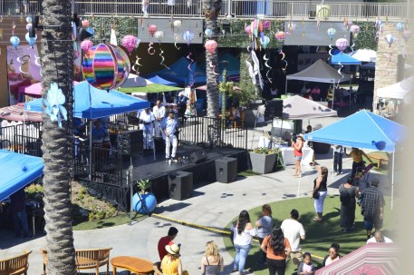 gardenwalk multiculturla festival (23)