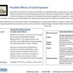Possible Effects of Lead Exposure