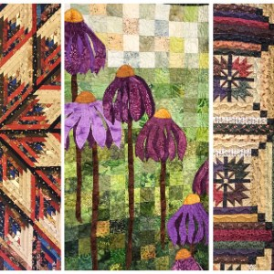 Lake Area Quilters Guild Exhibition