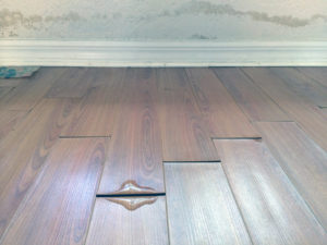 Drying Your Wood Floors After Water Damage