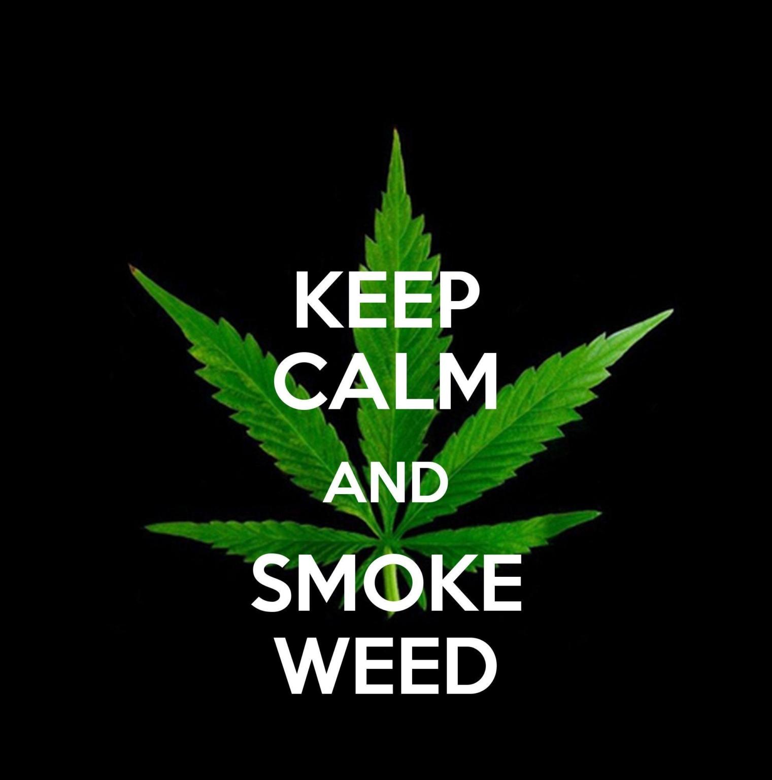 Need Weed Wallpaper - Novocom.top