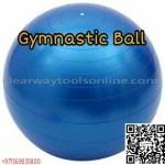 Gymnastic Ball 1