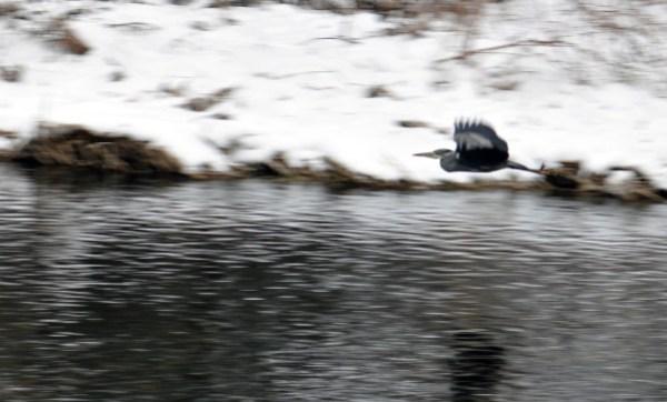 Thur-Fevrier-2010 0050