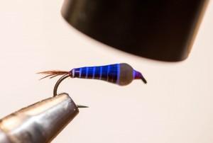 Nymphe a bille fil verni (13)