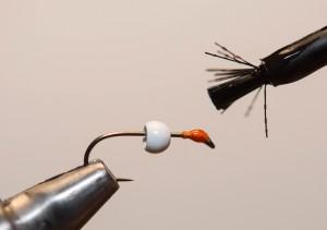 Nymphe a bille fil verni (3)