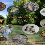 Voeux  pêche 2016