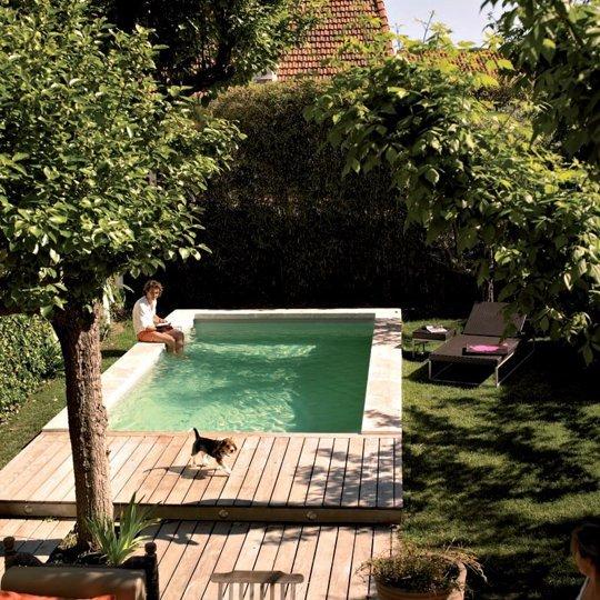 Piscine dans un petit jardin  ides et inspirations  Blog Dco  Blog Design  Clem Around The