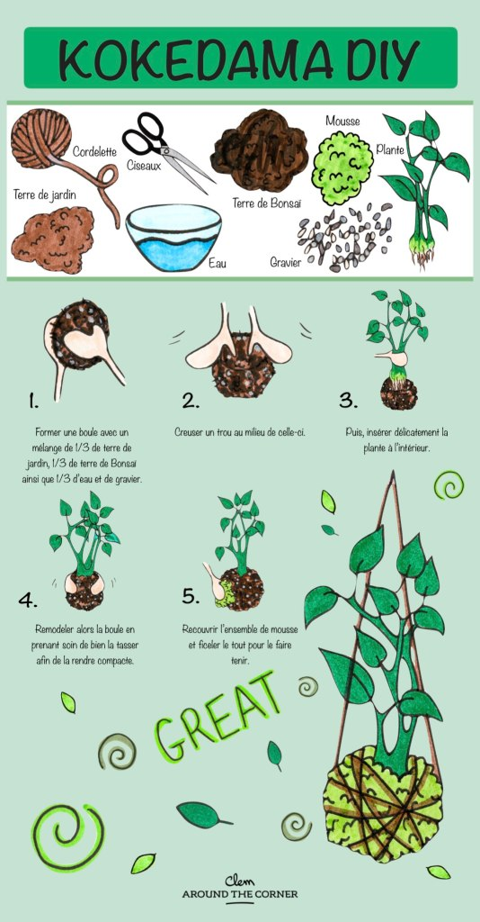 comment faire un kokedama tuto diy infographie - blog déco - clem around the corner