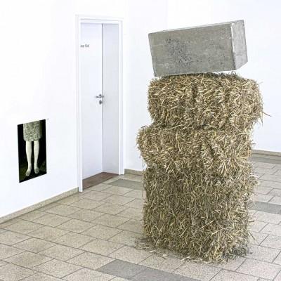 denkmal für die kleinbäuerliche landwirtschaft, 2013, stroh, beton, foto