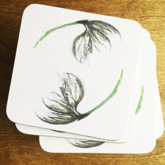 Cotton Grass Coasters by Clement Design