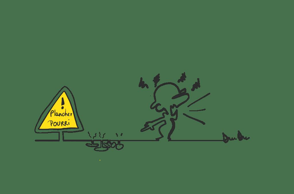 Vices cachés immobilier champignons