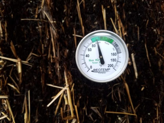 A compost thermometer is useful to determine when a bale has cooled sufficiently for planting.