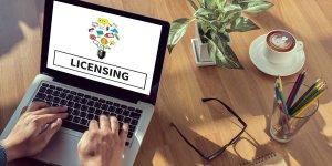 wordpress premium theme license