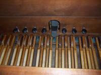 Organ 11