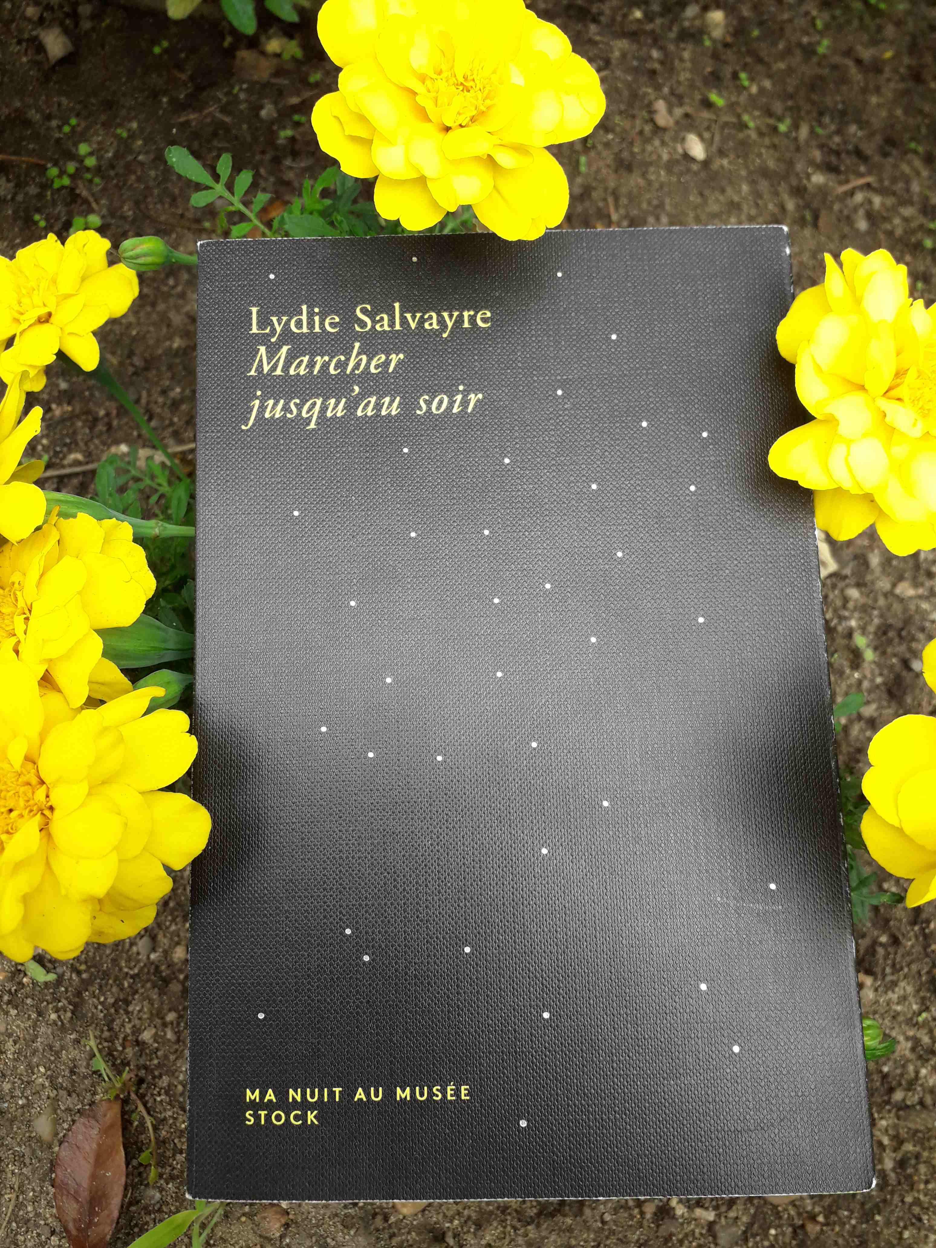 Lydie Salvayre Marcher Jusqu'au Soir : lydie, salvayre, marcher, jusqu'au, Lydie, SALVAYRE,, Marcher, Jusqu'au, Soir,, Musée, Notes, Critiques, Clés, Bibliofeel