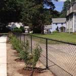 Black Chain Link Fence in Somerville MA