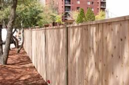 New Cedar Fence with Caps