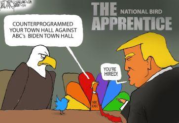 Dueling Biden Trump Town Halls loser: Darcy cartoon cleveland com