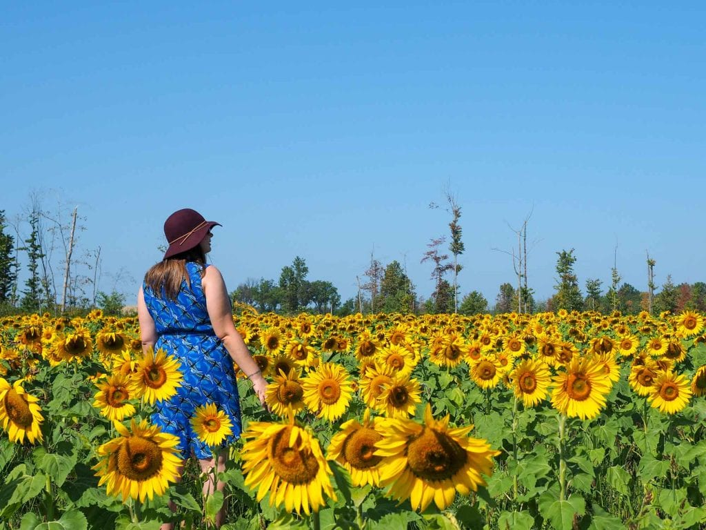 Maria's Field of Hope