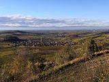 Blick vom Kaiserstuhl in die Rheinebene