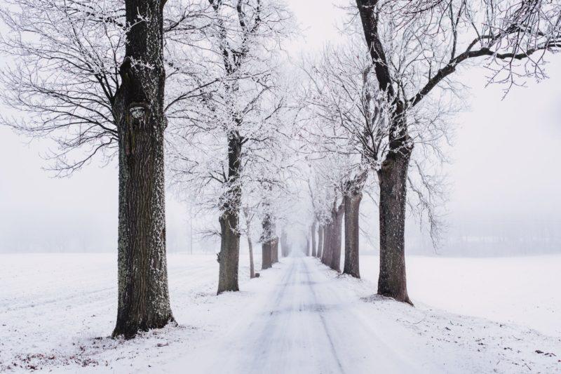 Sieben Tipps für Winter-Zubehör im Kastenwagen
