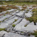 An image of the Burren, an environmentally sensitive area in Co. Clare