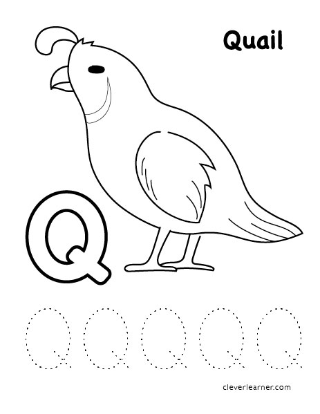 Letter Q Writing And Coloring Sheet