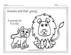 Animals and the names of their young ones worksheets for