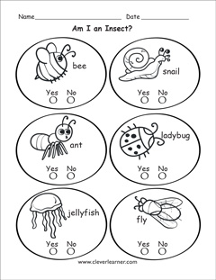 What is an insect worksheets for preschools