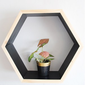 Hexagon Wall Shelf