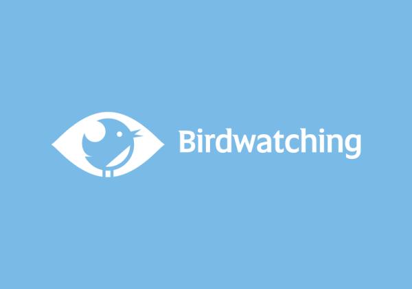 Birdwatching by Nikita Lebedev