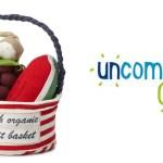 Review: Uncommon Goods Fresh Organic fruit basket