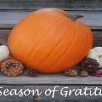 What Are You Thankful For? #StJudeGiveThanks