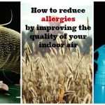 Health Moment: Indoor Air Pollution and Allergies