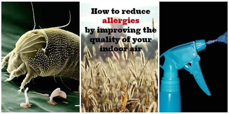 how to improve indoor air quality #family #allergies