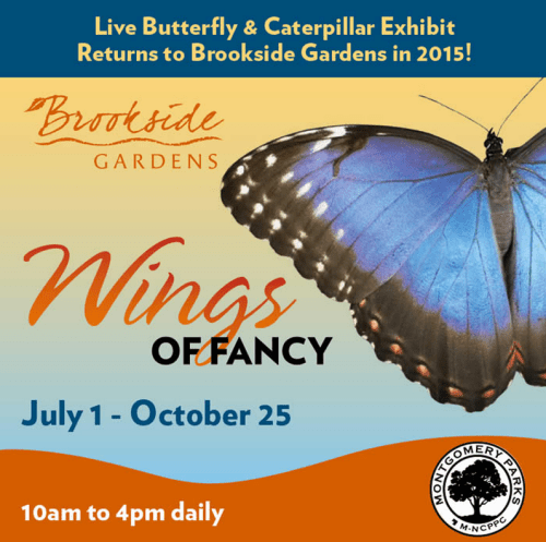 Wings of Fancy (Brookside Gardens Wheaton, MD) #thingstodo #events