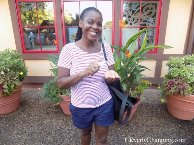 Use lots of hand sanitizer at Busch Gardens