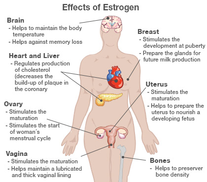Health Moment: Benefits From 10 Years of Anti-Estrogen Therapy