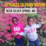 10 Places to Enjoy Nature Near Silver Spring, MD
